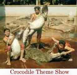 Crocodile Farm tour